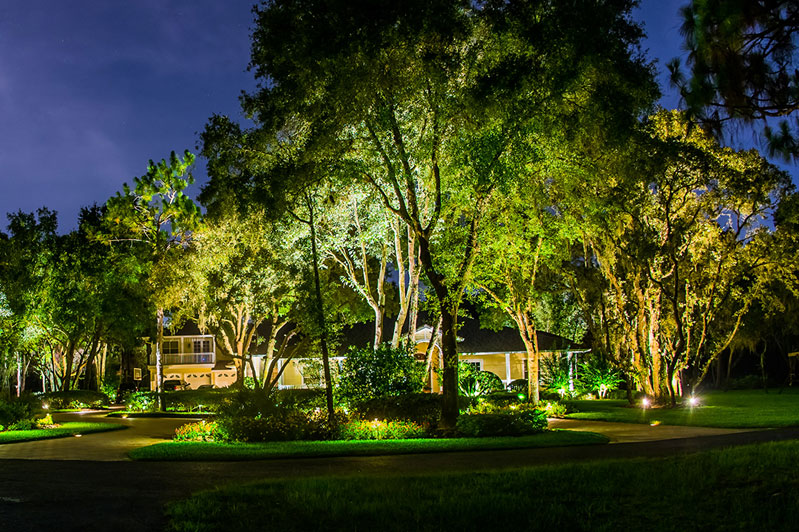Landscape Paradise Lighting Design