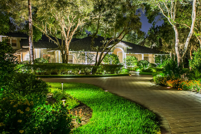 tampa florida outdoor landscape lighting installers