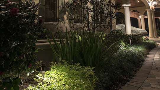 Elegant Accents Landscape Lighting Specialist Tampa